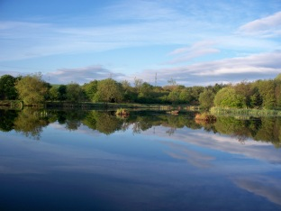 Picture of a lake with a mirror smooth surface in the sunshine