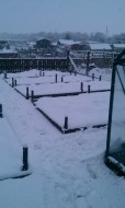 Picture of snow fall covering the raised beds at an allotment