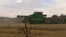 Picture of a combine harvester at work