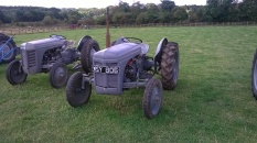 Picture of a Furguson tractor