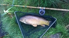 Picture of a double figure Mirror Carp in a vintage landing net with an Edgar Sealey rod and vintage Allcocks Aerial fishing reel