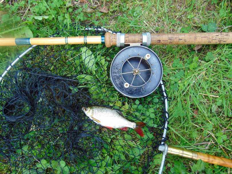 Picture of a small Roach with an Edgar Sealey Floatcaster De-Luxe rod, Allcocks Aerial Popular reel and vintage landing net