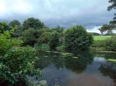 Picture of an approaching thunder storm over a pond